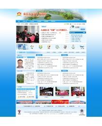 重庆九龙镇政府网站2013版